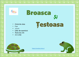 Frog and Turtle Life Cycle in Romanian, Broasca si Testoasa in Română