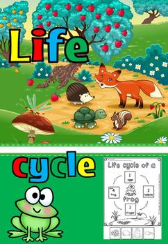 Frog life cycle(FREE- FEEDBACK CHALLENGE)