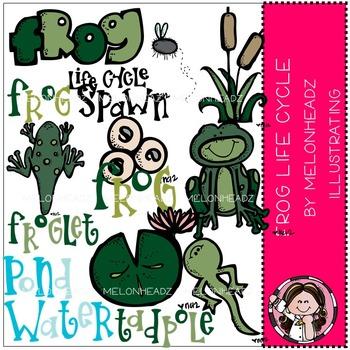 Melonheadz: Frog life cycle clip art - COMBO PACK