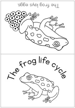 Frog life cycle coloring booklet