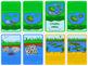 Frog life cycle mini book