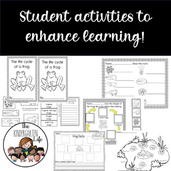 Frog life cycle: teacher book, minibook, anchor chart, craftivity