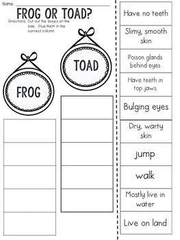 Frog or Toad? Cut and Paste Sorting Activity