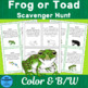 Frog or Toad Scavenger Hunt and Identification Activity