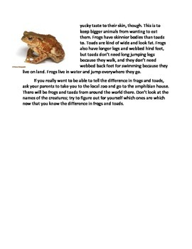 Frog/Toad Compare and Contrast