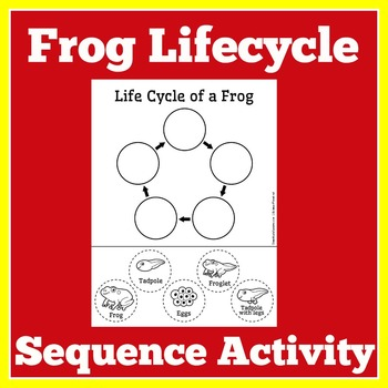 Frog Life Cycle Cut and Paste | Frog Life Cycle Activity