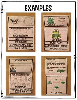 Frogs Flip Up Book
