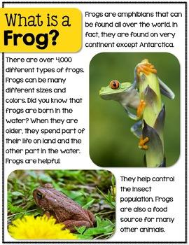 Frogs - A Nonfiction Unit