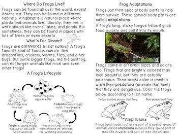 Frogs - Life cycle & Adaptations and Paper Bag Craft