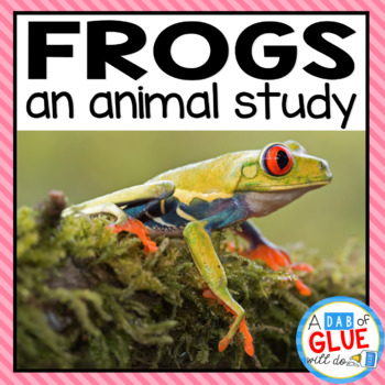 Frogs: An Animal Study