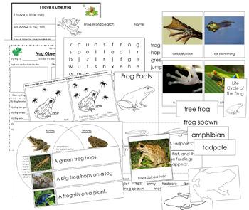 Frogs: Basic Unit Starter