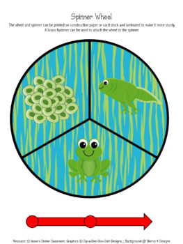Frogs Life Cycle Graphing Activity