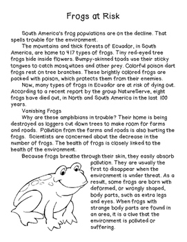Frogs & Koalas- Informative