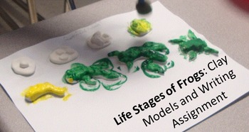 Life Cycle Collage furthermore Kermit The Frog Snack For Kids X besides Original additionally Stages Of Life also Plantreal X. on life cycles of frog