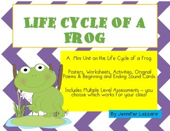Frogs: Life Cycle & MORE Mini Unit