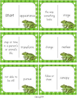 Frogs : Reading Street : Grade 2