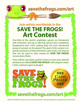 Frogs Teaching Ideas Resource Pack