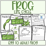 Frog Life Cycle Activities and Worksheets