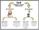 Frogs by Gail Gibbons QAR Comprehension Questions with QAR Poster