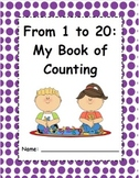 From 1 to 20: My Book of Counting
