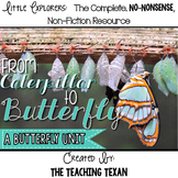 From Caterpillar to Butterfly:  A Non-Fiction Butterfly Life Cycle Unit