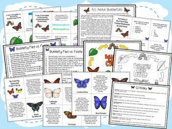 From Caterpillar to Butterfly Book Companion Pack & Facts About Butterflies