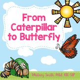 From Caterpillar to Butterfly Book Companion