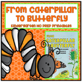 From Caterpillar to Butterfly Kindergarten NO PREP Supplem