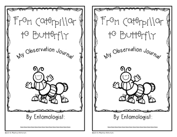 From Caterpillar to Butterfly - Observation Journal