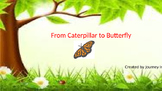 From Caterpillar to Butterfly (Unit 4) Journeys Kindergarten Common Core Reading