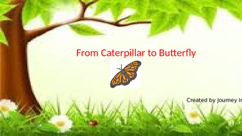 From Caterpillar to Butterfly (Unit 4) Journeys Kindergart