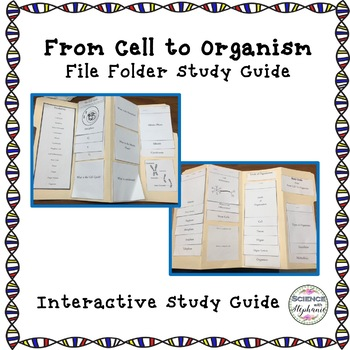 From Cell to Organism Interactive Study Guide