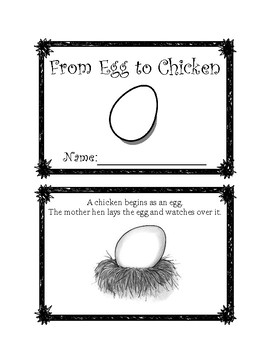 From Egg to Chicken Lifecycle Mini-Book