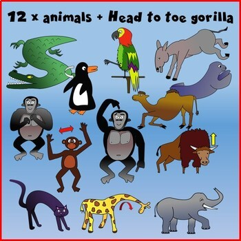 From Head to Toe Clipart - Learn through stories