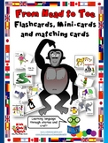From Head to Toe - Flashcards, Mini-cards, Matching cards-