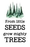 From Little Seeds