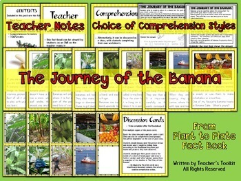 From Plant to Plate: The Journey of the Banana Bundle