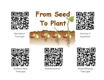 From Seed To Plant-Video QR Codes