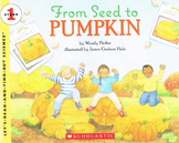 From Seed To Pumpkin (Wendy Pfeffer) Comprehension Test