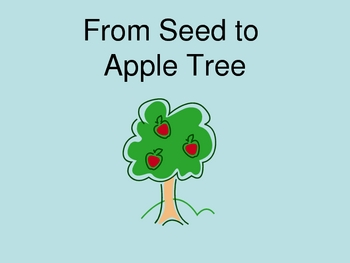 From Seed to Apple