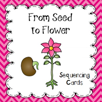 From Seed to Flower Sequencing Cards