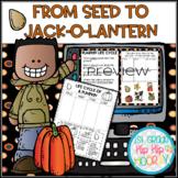 From Seed to Jack-o-Lantern Bundle