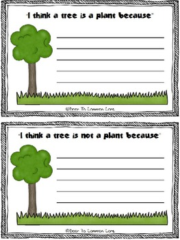 From Seed to Plant 2nd Grade ELA CCGPS Unit 2 - WORKSHEETS