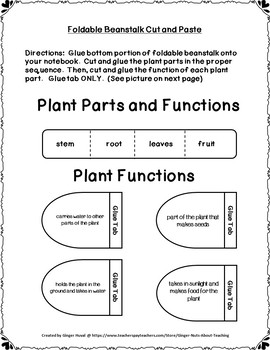 From Seed to Plant Bundle