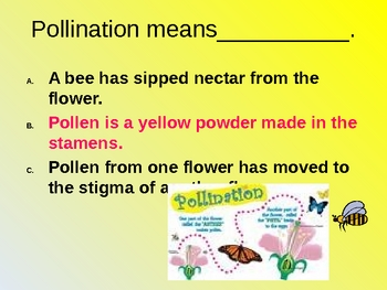 From Seed to Plant Interactive Comprehension Powerpoint