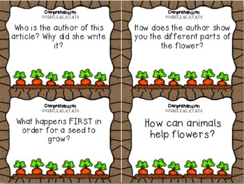From Seed to Plant Review Task Cards for Houghton Mifflin Journeys