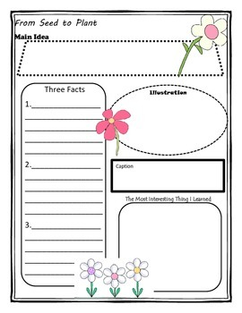 From Seed to Plant Story Map Graphic Organizer