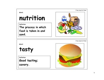 From Seed to Plant Vocabulary Cards