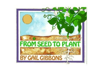 From Seed to Plant Vocabulary Power Point