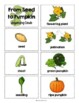 From Seed to Pumpkin by Jan Kottke, Guided Reading Lesson Plan, Level G